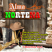 Alma Norteña by Various Artists