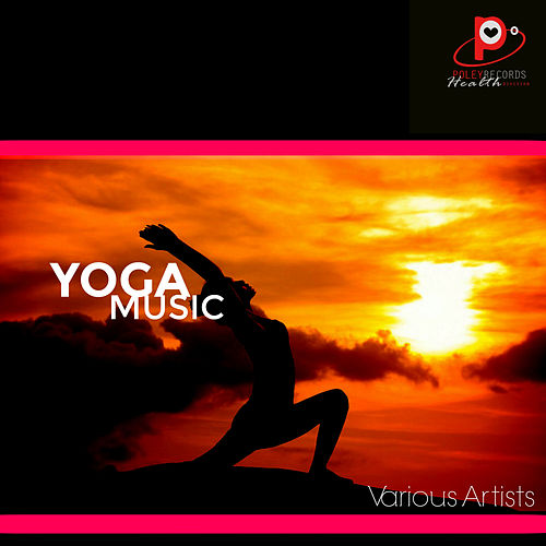 Yoga Music de Various