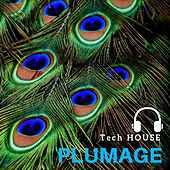 Tech House Plumage de Dj Regard