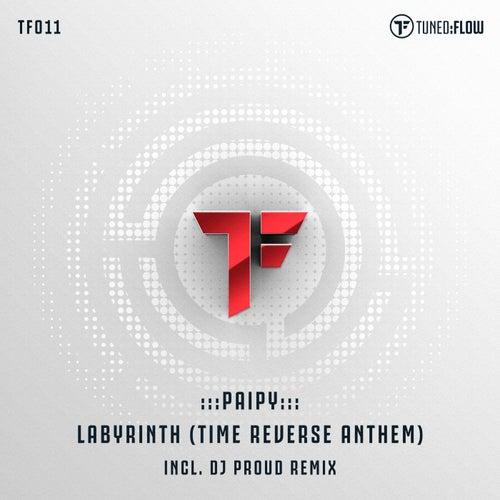Labyrinth (Time Reverse Anthem) by Paipy