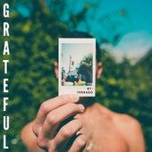 Grateful by Terrado