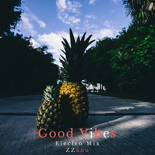 Good Vibes (Electro Mix) de ZZanu