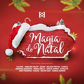 Magia do Natal de Calema