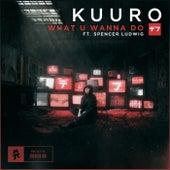 What U Wanna Do de Kuuro