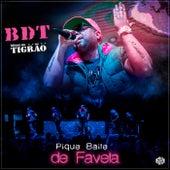 Pique Baile de Favela by Bonde do Tigrão