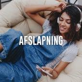 Afslapningsmusik - Musikken til middagshyggen og weekendhyggen by Various Artists