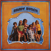 Meet The Brady Bunch de Barry Williams
