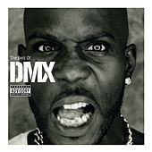 The Best Of DMX de DMX