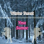 Winter Forest von Yma Sumac