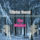 Winter Forest by The Wailers