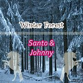 Winter Forest di Santo and Johnny