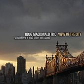 View of the City (feat. Harvie S and Steve Williams) by Doug MacDonald Trio