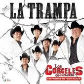 La Trampa de Los Corceles De Linares