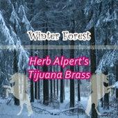 Winter Forest by Herb Alpert