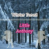 Winter Forest by Little Anthony and the Imperials