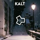 Kalt by Erwin