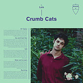 Crumb Cats by Lois