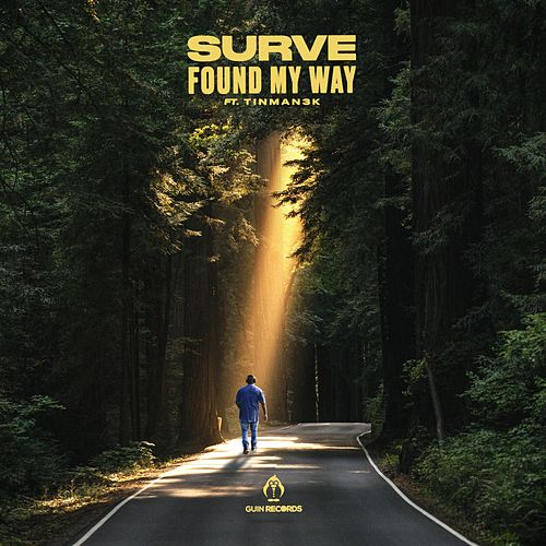 Found My Way by Surve
