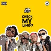 Check My Lingo von Lingo Nation