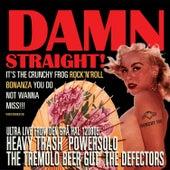 DAMN STRAIGHT! - The Crunchy Frog Rock'n'roll Bonanza de Various Artists