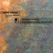 Mixed Canvas by Various Artists