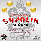 Shaolin Riddim by RDX