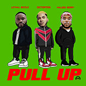 Pull Up by Diztortion