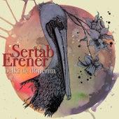 Belki De Dönerim by Sertab Erener