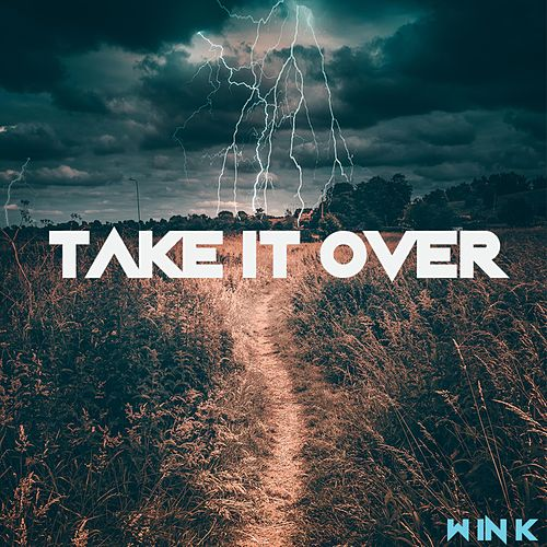Take It Over by Wink