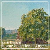 Fugue Selection at Organ by David Ennarqua