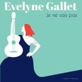 Je ne sais pas by Evelyne Gallet
