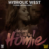 She Say's He's Just The Homie (feat. Ampichino & Smiggz) by Hydrolic West