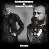 Classic strauss & dvořák de Various Artists