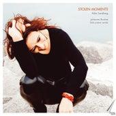Stolen Moments - Johannes Brahms, Solo Piano Works by Rikke Sandberg
