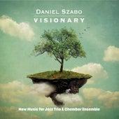Visionary de Daniel Szabo