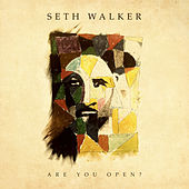 Are You Open? by Seth Walker