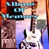 Album Of Memory de Various Artists