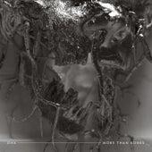 More Than Bones von Demon Hunter