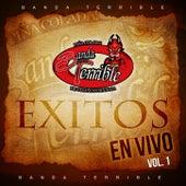 Exitos En Vivo Vol. 1 by Banda Terrible