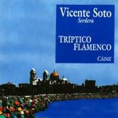 Tríptico Flamenco: Cádiz di Vicente Soto Sordera