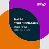 This Is House (Robbie Rivera Remix) de Sted-E