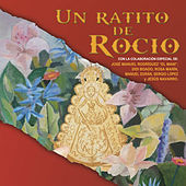 Un Ratito de Rocío de Various Artists