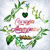 Corazón Amazónico by Los Mirlos