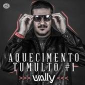 Aquecimento Tumulto #01 by DJ Wally