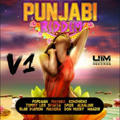 Punjabi Riddim, Vol. 1 von Various Artists