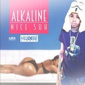 Nice Suh (Mildew Riddim) by Alkaline