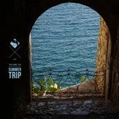 Summer Trip, Vol.05 fra Various Artists