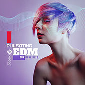 Pulsating EDM Top Rave Hits von Various Artists