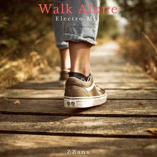 Walk Alone (Electro Mix) di ZZanu