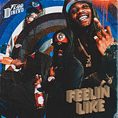 Feelin Like by Flipp Dinero